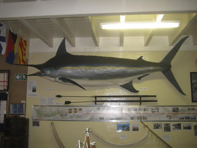 "the ""Blue Marlin"""