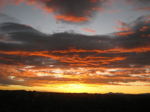 Sunset Gold - Northern Cape