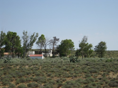 a farmstead close to Carnarvon